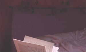 Zuhause in der Fremde – fremd in der Heimat -Lesetipps
