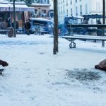 Ein Sack voll Murmeln – Filmtipp