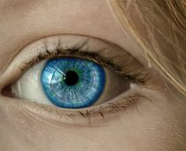 Deine blauen Augen sind phänomenal