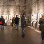 """""""SURVIVORS"""" virtuell – Ausstellung des Fotografen Martin Schoeller"""