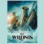 RUF DER WILDNIS – Filmtipp