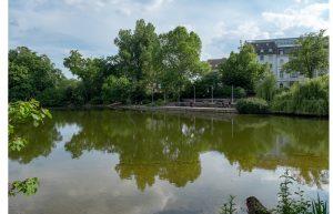 Asphalt am See_Foto_Ralf Puder