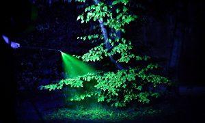 "Open-Air- Klanginstallation- Beethovens ""Pastorale"" als Naturschauspiel"