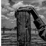Zwei Fotografie -Ausstellungen führen nach München und Koblenz